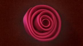 Bias Cut Wrap Rose