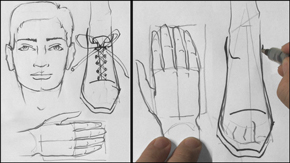 Male Head, Hands & Feet