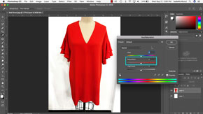 Manipulating Images in Adobe Photoshop-#2